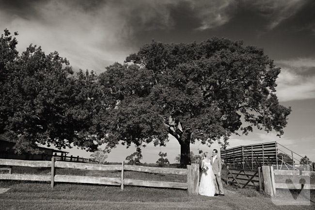 Belgenny Farm Wedding (46)