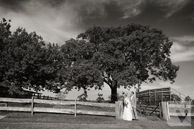 Belgenny Farm Wedding (46)